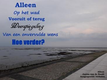 Alleen - Janine van de Raadt - Aangespoelde Verhalen.jpg